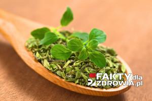 oregano2-faktydlazdrowia-pl