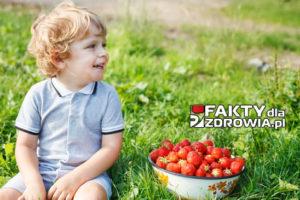 Happy little toddler boy on pick a berry organic strawberry farm