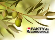 Jedz więcej oliwek, aby uniknąć nowotworów i poprawić ogólny stan zdrowia