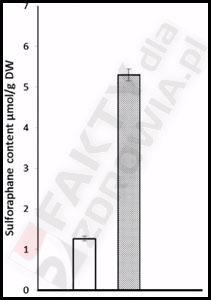 Sulforafan 1 lyzeczka proszku gorczycy