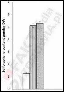 Proszek gorczycy sulforafan