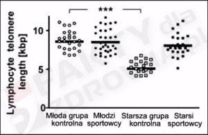 telomery u sportowców